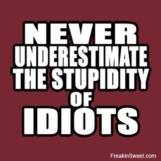 Stupid_idiots_banner
