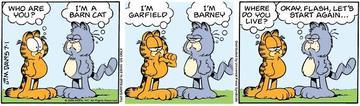 Barncat_3